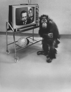 The Yerkes Primate Center & Mind Control