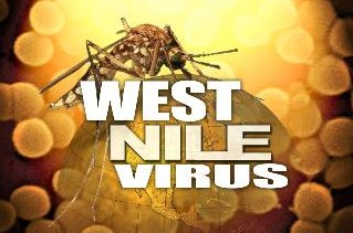 West Nile Virus: Questions that have Never Been Answered