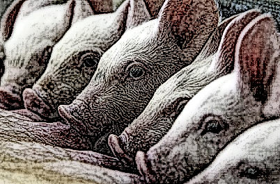 Academics Linked to Drug Industry 'Exaggerated' Swine Flu Risk