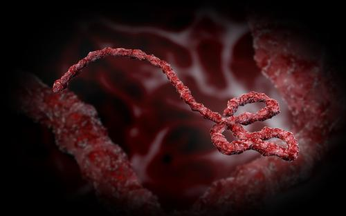 Is Ebola a Biological Warfare Weapon?