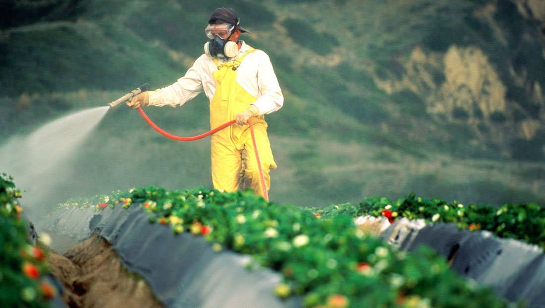 Monsanto Fights Report Tying Herbicide, Cancer
