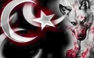 On the Trail of Turkey's Terrorist Grey Wolves, by Martin A. Lee